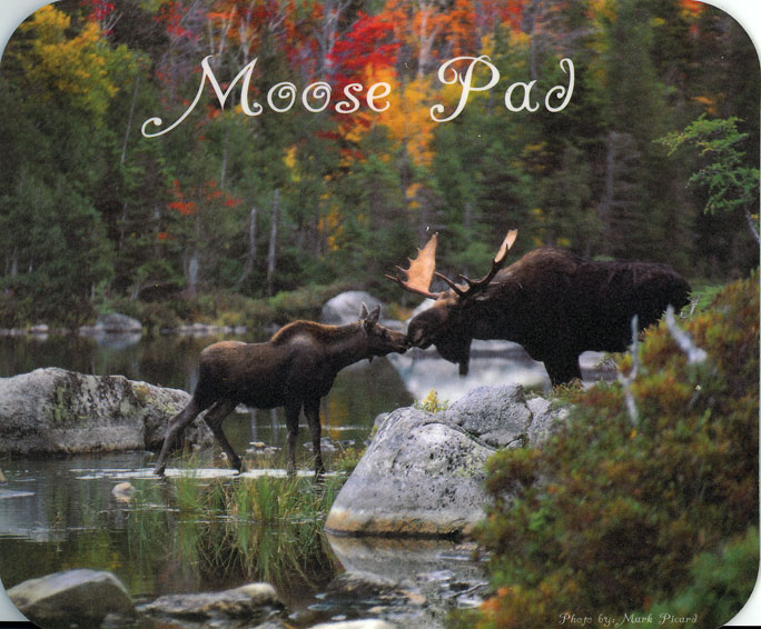 Kissing Moose - Mouse Pad