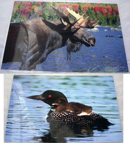 Double Sided Place-mat Moose /Loon